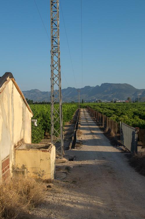 Plantagen und Sierra de la Murta