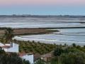 Albufeira Reisfelder Pano Richtung Meer