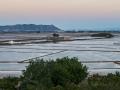 Albufeira bewässerte Reisfelder Pano