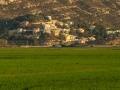 Reisfelder Cullera