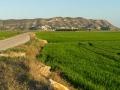 Reisfelder CulleraFelsen