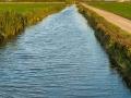 Reisfelder Kanal 2