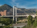 Puente Fernando Reig