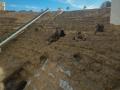 Römische Amphitheater Cádiz