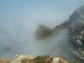 Islas Cies: Nebel, Möwen, Schluchten