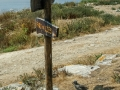 Camino do Faro