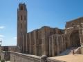 Seu Vella, Lleida