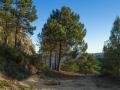 Aufstieg von La Drova