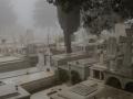 Friedhof in Aparanthos