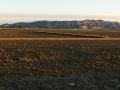 Reisfelder im Winter