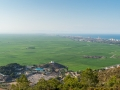 Reisfelder und Urbanicaciones Sommer